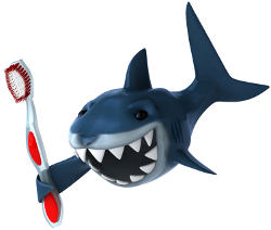 Shark with toothbrush