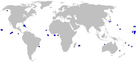 Cookiecutter Shark Distirbution Map